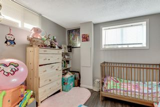 Photo 18: 1532 48 Street SE in Calgary: Forest Lawn Detached for sale : MLS®# A1138104