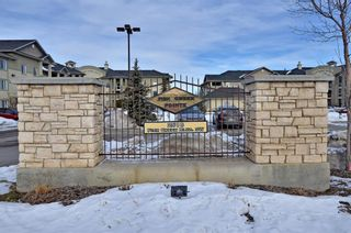 Photo 1: 1306 2518 Fish Creek Boulevard SW in Calgary: Evergreen Apartment for sale : MLS®# A1065194