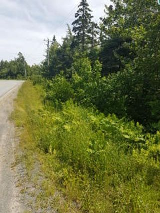Photo 17: Lot F Clam Bay Road in Lake Charlotte: 31-Lawrencetown, Lake Echo, Porters Lake Vacant Land for sale (Halifax-Dartmouth)  : MLS®# 202108698
