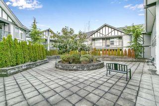 Photo 22: 219 12088 75A Avenue in Surrey: West Newton Condo for sale : MLS®# R2538086