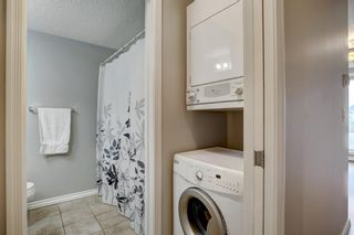 Photo 16: 144 1717 60 Street SE in Calgary: Red Carpet Apartment for sale : MLS®# A1131300