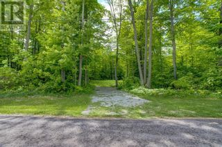 Photo 14: 1832 COUNTY RD. 40 Road in Quinte West: Vacant Land for sale : MLS®# 40154512