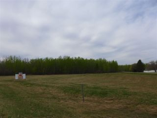 Photo 17: 50 Ave RR 281: Rural Wetaskiwin County Rural Land/Vacant Lot for sale : MLS®# E4191216