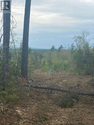 Photo 7: West Caledonia in Whiteburn Mines: Vacant Land for sale : MLS®# 202112919