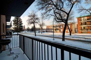 Photo 20: 207 10149 83 Avenue in Edmonton: Zone 15 Condo for sale : MLS®# E4229584