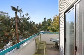 Photo 19: 208 20268 54 AVENUE in Langley: Langley City Condo for sale : MLS®# R2109826