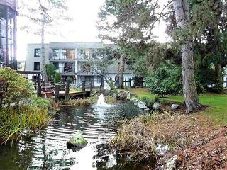 "Photo 16: 209 8860 NO 1 Road in Richmond: Boyd Park Condo for sale in ""APPLE GREEN"" : MLS®# R2213678"