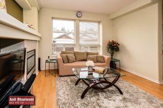 "Photo 51: 24113 102 Avenue in Maple Ridge: Albion House for sale in ""Homestead"" : MLS®# R2499816"