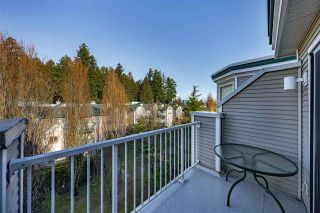 Photo 25: 407 12155 191B STREET in Pitt Meadows: Central Meadows Condo for sale : MLS®# R2554703