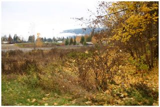 Photo 3: 480 Southeast 30 Street in Salmon Arm: SE Vacant Land for sale : MLS®# 10171761