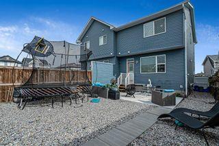 Photo 22: 9 Auburn Meadows Link SE in Calgary: Auburn Bay Semi Detached for sale : MLS®# A1114032