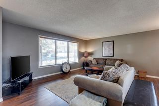 Photo 3: 11 Bedwood Place NE in Calgary: Beddington Heights Detached for sale : MLS®# A1145937