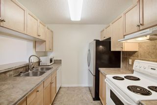Photo 15: 204 2022 CANYON MEADOWS Drive SE in Calgary: Queensland Apartment for sale : MLS®# A1028195