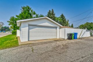 Photo 35: 703 Alderwood Place SE in Calgary: Acadia Detached for sale : MLS®# A1131581