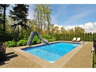 "Photo 56: 2911 146 Street in Surrey: Elgin Chantrell House for sale in ""ELGIN RIDGE"" (South Surrey White Rock)  : MLS®# F1425975"