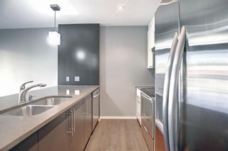 Photo 10: 207 414 Meredith Road NE in Calgary: Crescent Heights Apartment for sale : MLS®# A1150202