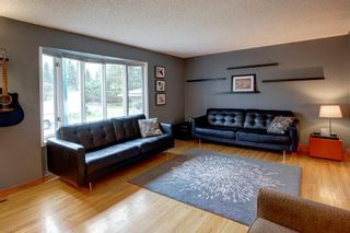Photo 2: 527 MURPHY Place NE in Calgary: Mayland Heights Detached for sale : MLS®# C4297429