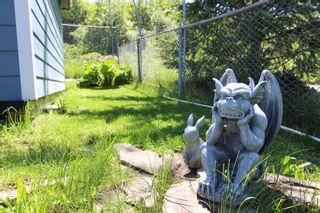 Photo 58: 2921 Cedar Drive in Sorrento: Blind Bay House for sale (South Shuswap)  : MLS®# 10232374