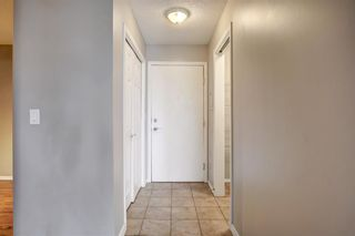 Photo 15: 144 1717 60 Street SE in Calgary: Red Carpet Apartment for sale : MLS®# A1131300