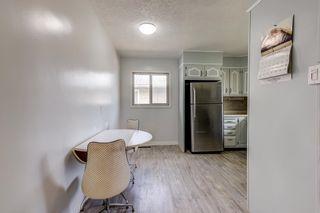 Photo 11: 4030 117 Avenue in Edmonton: Zone 23 House for sale : MLS®# E4246156