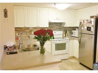 Photo 7: 228 5880 DOVER CRESCENT in Richmond: Riverdale RI Condo for sale ()  : MLS®# V1139902