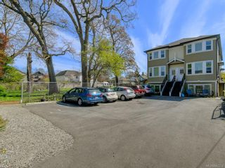 Photo 41: 3 1146 Caledonia Ave in Victoria: Vi Fernwood Row/Townhouse for sale : MLS®# 842254
