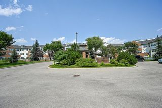 Main Photo: 311 1920 14 Avenue NE in Calgary: Mayland Heights Apartment for sale : MLS®# A1132315