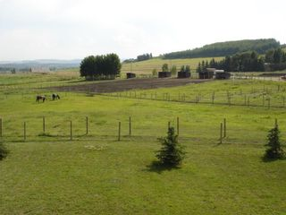 Photo 15: 322188 135 Street W: Rural Foothills County Detached for sale : MLS®# A1131052