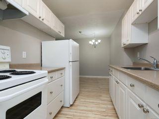 Photo 2: 312 3235 Quadra St in : SE Maplewood Condo for sale (Saanich East)  : MLS®# 864051