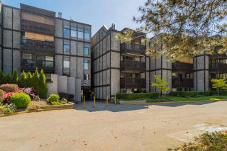 """Photo 19: 415 9672 134 Street in Surrey: Whalley Condo for sale in """"PARKWOOD-DOGWOOD"""" (North Surrey)  : MLS®# R2171533"""