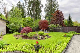 """Photo 38: 22742 HOLYROOD Avenue in Maple Ridge: East Central House for sale in """"GREYSTONE"""" : MLS®# R2582218"""