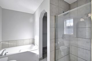 Photo 20: 253 Elgin Way SE in Calgary: McKenzie Towne Detached for sale : MLS®# A1087799