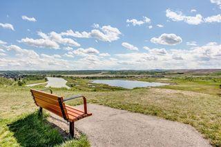 Photo 47: 214 CRANLEIGH View SE in Calgary: Cranston Detached for sale : MLS®# C4300706