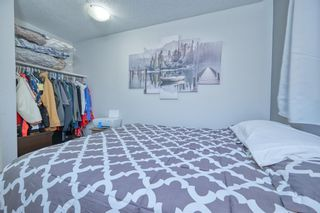 Photo 24: 39 Erin Green Way SE in Calgary: Erin Woods Detached for sale : MLS®# A1118796
