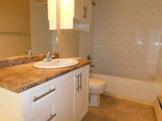 Photo 7: 509 9710 105 Street in Edmonton: Zone 12 Condo for sale : MLS®# E4236904