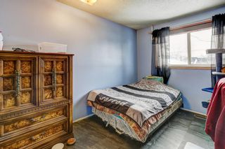 Photo 12: 1134 Osler Street: Carstairs Semi Detached for sale : MLS®# A1085580