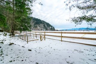 Photo 36: 4077 LAKEMOUNT Road in Abbotsford: Sumas Mountain House for sale : MLS®# R2229779