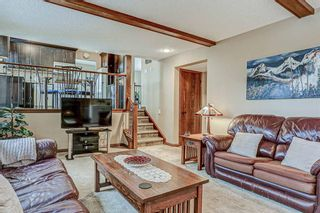 Photo 20: 87 Bermuda Close NW in Calgary: Beddington Heights Detached for sale : MLS®# A1073222