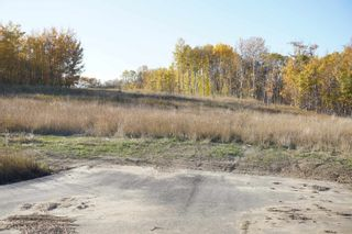 Photo 6: 14 53214 RR13: Rural Parkland County Rural Land/Vacant Lot for sale : MLS®# E4266456