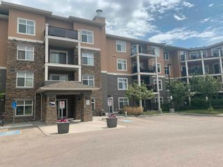 Photo 1: 414 6070 SCHONSEE Way in Edmonton: Zone 28 Condo for sale : MLS®# E4248308