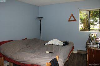 Photo 5: 119 900 Tolmie Ave in VICTORIA: SE Quadra Condo for sale (Saanich East)  : MLS®# 771380