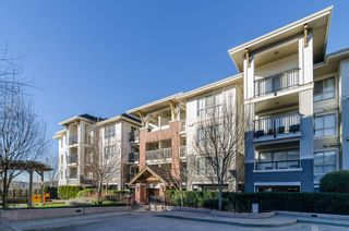 """Photo 28: D401 8929 202ND Street in Langley: Walnut Grove Condo for sale in """"THE GROVE"""" : MLS®# F1428782"""