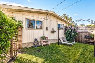 Photo 50: 459 Queen Charlotte Road SE in Calgary: Queensland Detached for sale : MLS®# A1122590
