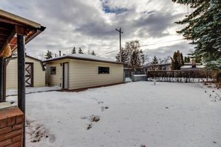 Photo 22: 3511 34 Avenue SW in Calgary: Rutland Park Detached for sale : MLS®# A1061908