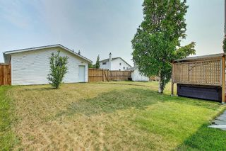 Photo 40: 94 Erin Meadow Close SE in Calgary: Erin Woods Detached for sale : MLS®# A1135362