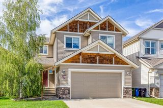 Photo 40: 212 COPPERPOND Circle SE in Calgary: Copperfield Detached for sale : MLS®# C4305503