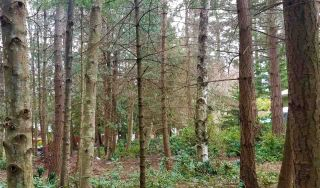Photo 1: 217 SPINNAKER Drive: Mayne Island Land for sale (Islands-Van. & Gulf)  : MLS®# R2538861