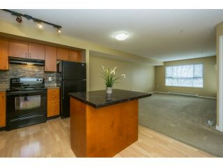 """Photo 6: 310 5465 203 Street in Langley: Langley City Condo for sale in """"Station 54"""" : MLS®# R2039020"""