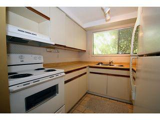 Photo 5: 4705 48B Street in Ladner: Ladner Elementary House for sale : MLS®# V1073490