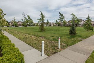 """Photo 19: 7136 194B Street in Surrey: Clayton House for sale in """"Clayton Heights"""" (Cloverdale)  : MLS®# R2079135"""